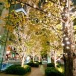 恵比寿ガーデンプレイスイルミネーション期間?レストラン個室や夜景の見えるところは?