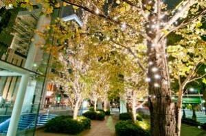 恵比寿ガーデンプレイスイルミネーション