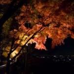 京都清水寺の紅葉ライトアップ情報を!見ごろと近くのホテル情報を!
