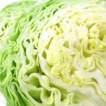 春キャベツの簡単で美味しいレシピを!ベーコンパスタやサラダの作り方!